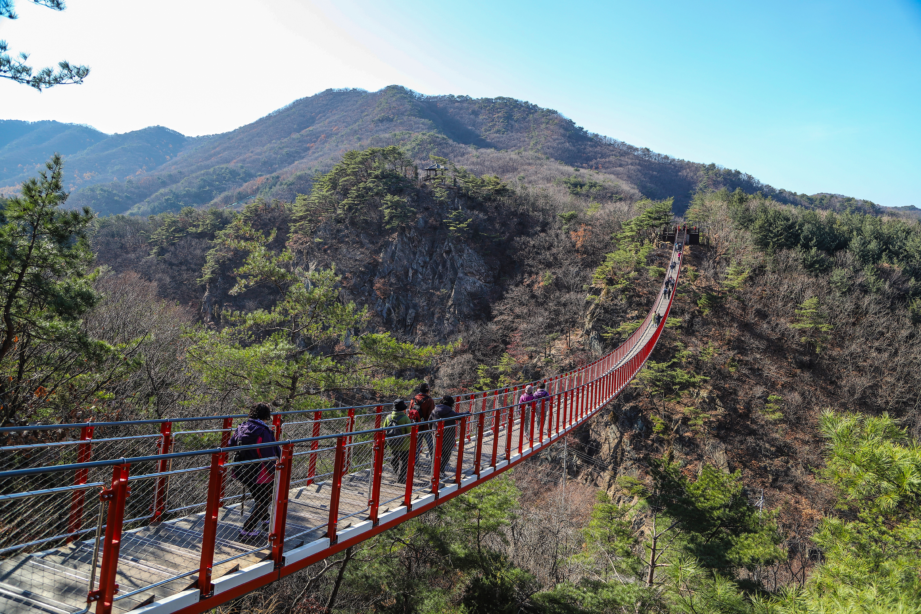 An open view of a thrilling Suspension Bridge of Gamaksan Mountain over dangeours rock face. A few visitors are walking on the bridge.