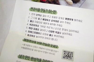 시흥갯골랜선축제 관련사진