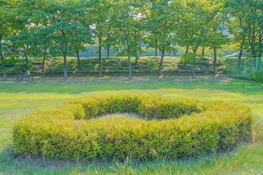 하남 미사경정공원 정원 속 하트로 관리해놓은 풀