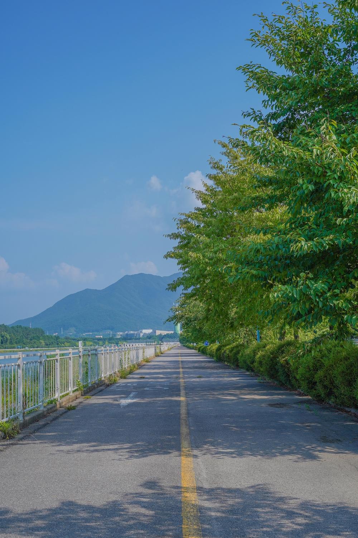 하남 미사경정공원 쨍쨍한 하늘아래 경정공원 인도 및 자전거도로