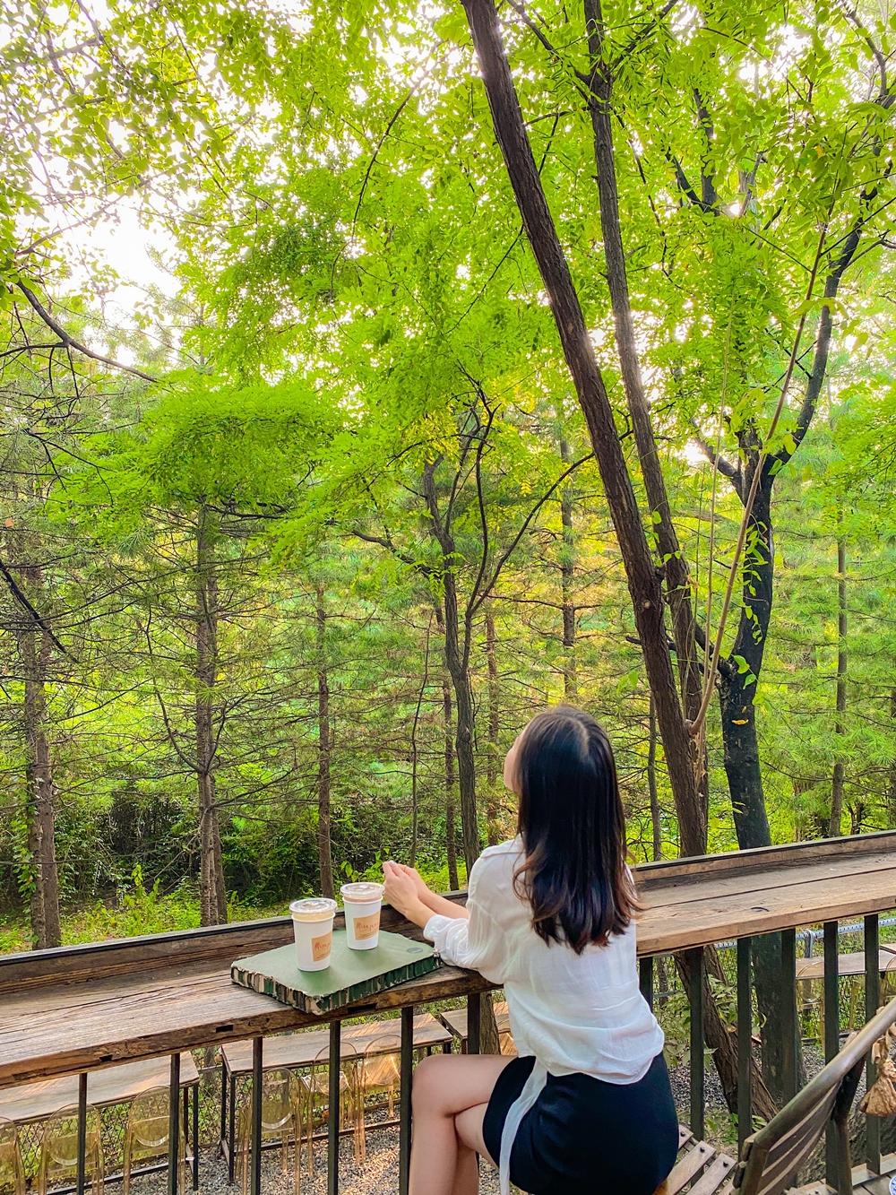 하남 미사장카페  2잔의 커피와 숲을 바라보는 이효정