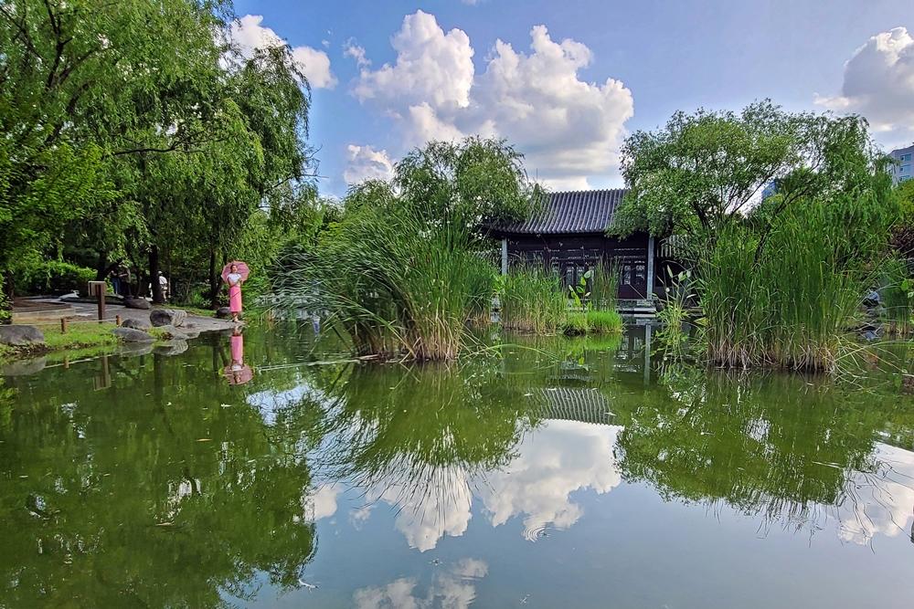 수원 근교 나들이 가볼만한곳 수원 효원공원 월화원 연못