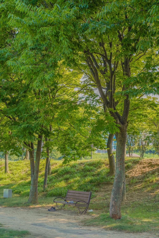 하남 미사경정공원 벤치