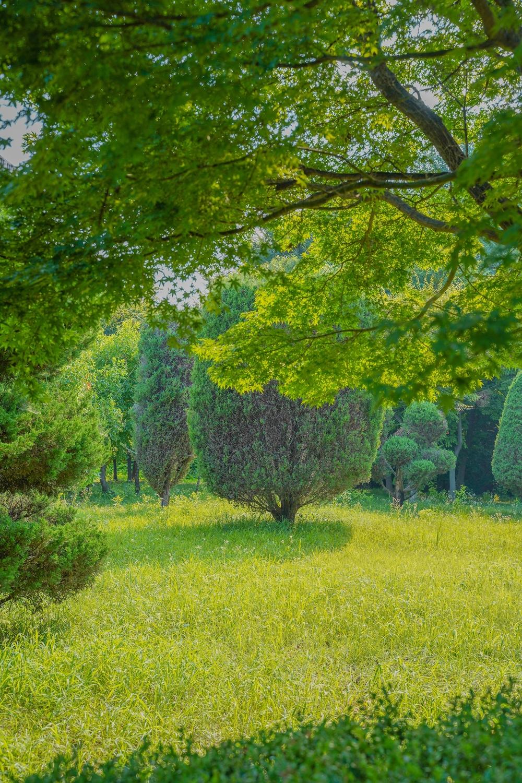 하남 미사경정공원 뱀 출몰 주의 지역 아름다운 숲 모습