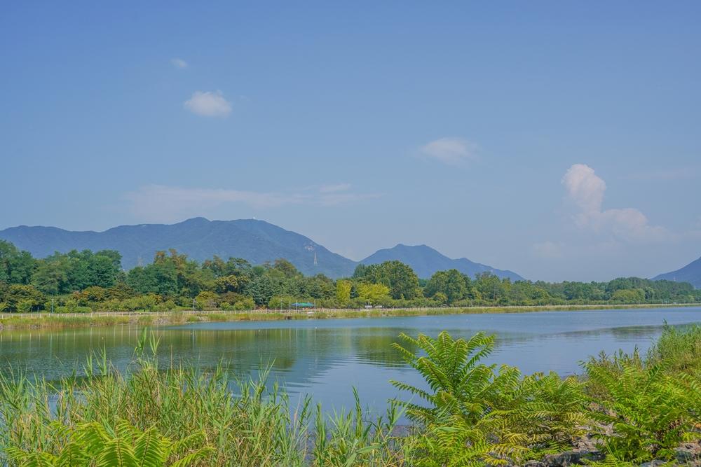 하남 미사경정공원 내 호수와 산 풍경