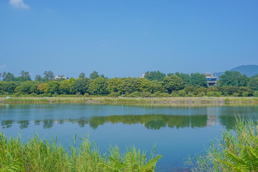 하남 미사경정공원 호수와 도심 숲이 어우러진 모습